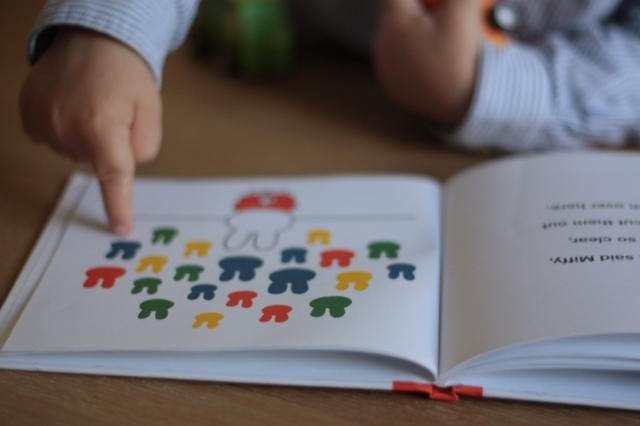 Libros infantiles dibambu Miffy 1.jpeg