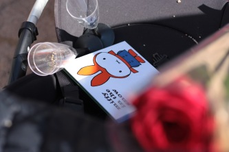 books and roses (2)